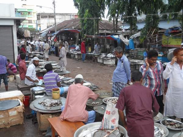 কমলনগরে হাট-বাজার ইজারার পুনঃদরপত্র