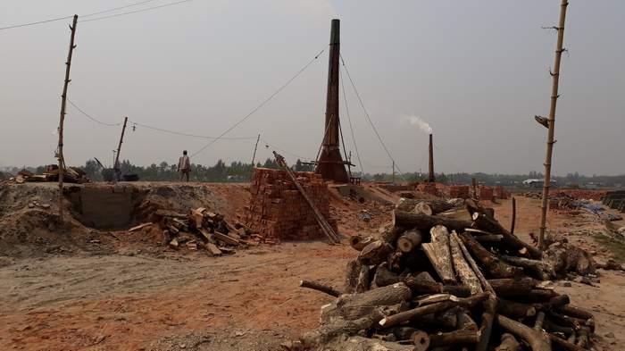 কমলনগরে ফসলি মাঠ ও লোকালয়ের ইটভাটায় পুড়ছে গাছ, ঘটছে দুর্ঘটনা