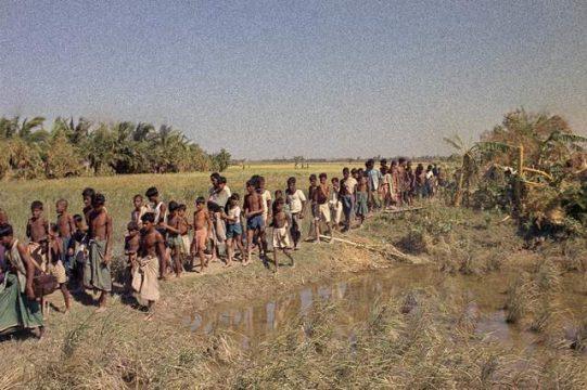 ১২ নভেম্বর উপকূলের ১৬ জেলায় পালিত হবে 'উপকূল দিবস'