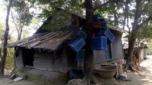 বঙ্গোপসাগরে ফিশিং ট্রলারে 'রহস্যময়' বিস্ফোরণ: লক্ষ্মীপুরের ৬ জেলের মৃত্যু (ভিডিও)